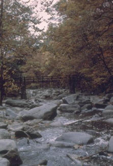 File:Rock-Creek-Park.jpg
